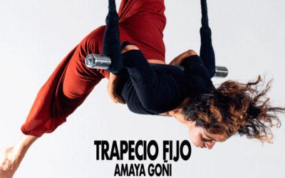 TRAPECIO FIJO. Amaya Goñi. 12 -13/12